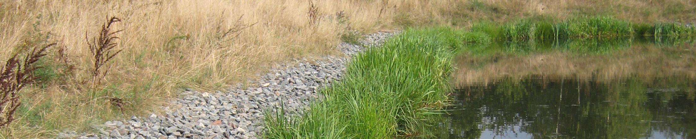 Vegetační rohože